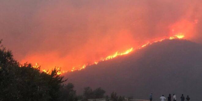 حرائق كبيرة تلتهم جبال مشتى الحلو.. ابو سعدى : تم استدعاء الطيران للمساعدة في إخمادها