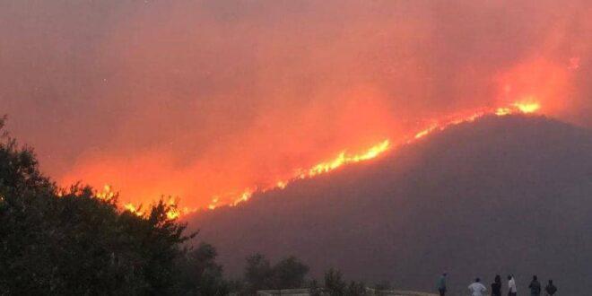 الحرائق تلتهم أحراج ريف حمص الغربي في سوريا
