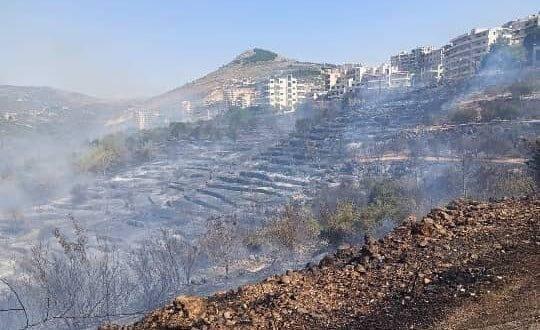حافظ طرطوس : 3972 أسرة تضررت بشكل مباشر و الحرائق طالت أكثر من نصف مليون شجرة