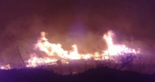 السيطرة على حريق ضخم فجر اليوم قرب غابة النبي متى بريف طرطوس