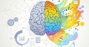 الذكاء 7 أنواع.. فأي نوع من الذكاء تتمتّع به ؟