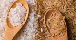 فوائد الأرز بأنواعه وأضراره وأفضل طريقة صحية لتناوله