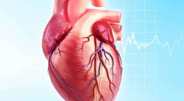أسباب ضعف عضلة القلب .. بعضها تقوم بها دون أن تعلم!