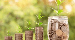 41 بالمئة من إجمالي الناتج المحلي تسهم به المشروعات الصغيرة و المتوسطة