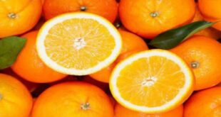 الفواكه خارج البيوت السورية منذ سنوات.. و أرخصها البرتقال بـ750 ليرة للكيلو الواحد!!