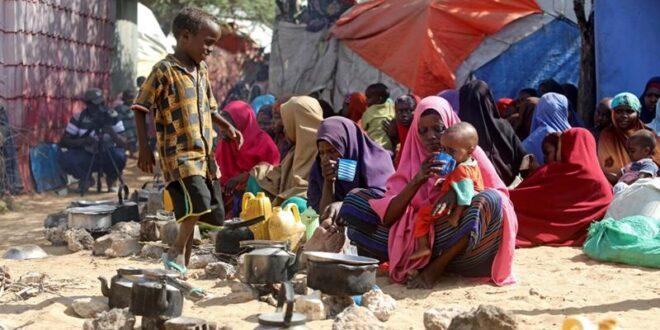 نقيب الأطباء: أطباء سوريون سافروا إلى الصومال لأن الراتب أفضل