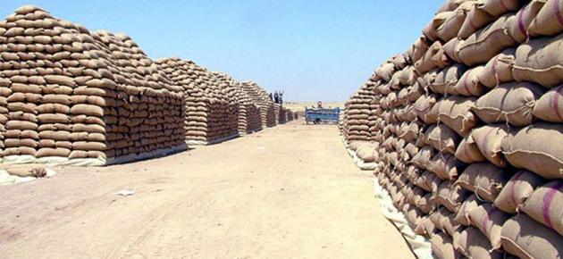 البرازي: مخزون القمح والدقيق يكفي لعدة أشهر