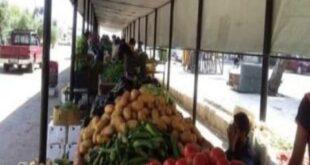 الأمطار والتصدير يرفعان أسعار البطاطا والبندورة
