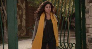 تقارير: عمرو دياب ينفصل عن دينا الشربيني ويطردها