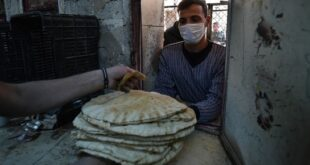 التموين: حصة المواطن من القمح 75 غراماً يومياً