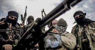 فضائح تورط الحكومة الهولندية بدعم الإرهاب في سورية تتوالى