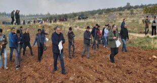 سوريا.. وزيرا الزراعة والتربية يشاركان في زراعة القمح