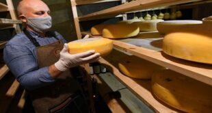 أنواع ممتازة من الجبن تطيل عمر الإنسان