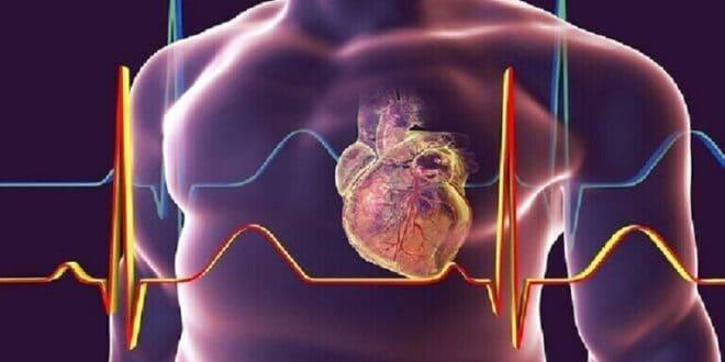 كشف عامل غير واضح يزيد من خطر الإصابة بأمراض القلب