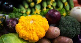 مادة غذائية تحمي من سرطان الأمعاء