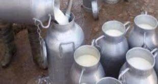 اللجنة الاقتصادية ترفض طلب وزارة الزراعة بإيقاف تصدير الحليب