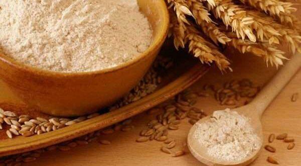 فوائد جنين القمح ونصائح عند استخدامه وأضرار الإفراط في تناوله