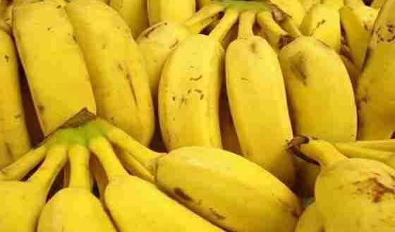 احذروا هذا الموز.. ينهي حياتكم خلال ساعتين