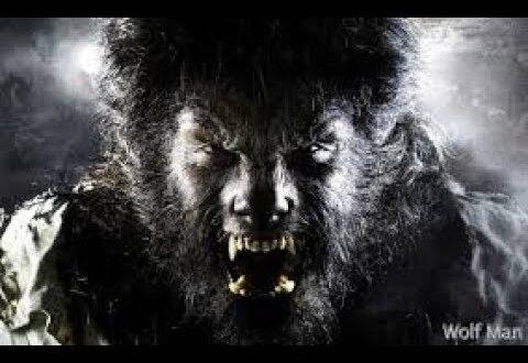 اعتقال الرجل الذئب بعد إخافته الناس في باكستان ليلة رأس السن