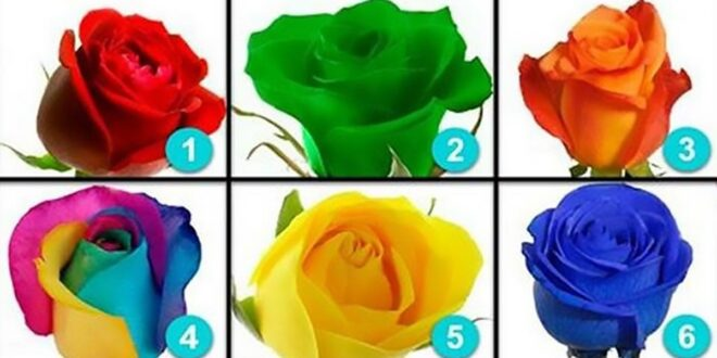 اختر وردة واكتشف ما الذي يميز شخصيتك