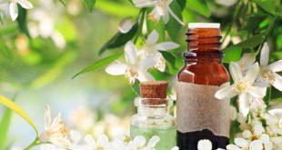 ستدهشك.. فوائد ماء الزهر الصحية للجسم