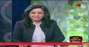 نقيب الصحفيين يعلق على توقيف المذيعة في التلفزيون السوري هالة الجرف
