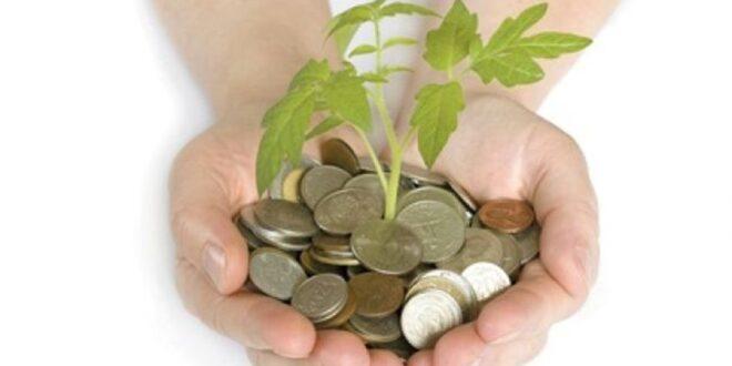 ضمان مخاطر القروض توضح مزايا تأسيس مصارف التمويل الأصغر