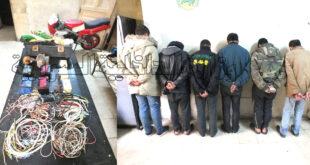 عصابة حي السقيلبية باللاذقية في قبضة الأمن