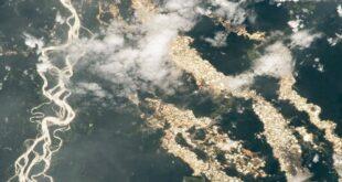 أنهار من الذهب.. كاميرا فضائية تكشف ما يحدث في الأمازون