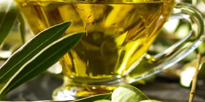 فائدة عظيمة لتناول ملعقة من زيت الزيتون على معدة فارغة ستذهلك