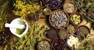 أعشاب تأثيرها مذهل في محاربة الالتهابات ..إليك أهمها
