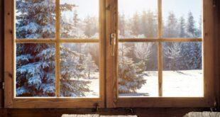 الخشب الشفاف قد يحل محل الزجاج يومًا ما