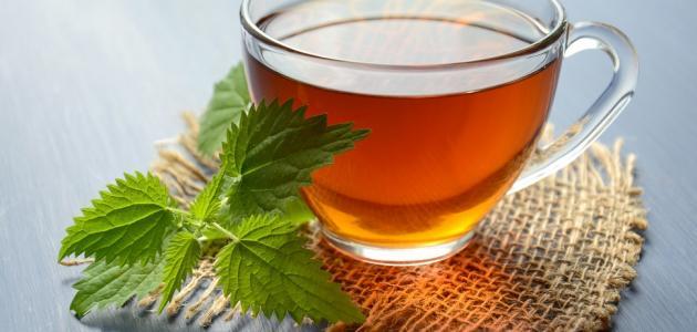 منجم من الفوائد.. شاي النعناع مفيد لصحة الإنسان بشكل لا يمكن تصوره!