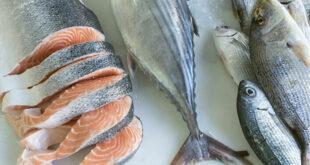 أفضل وأسوأ أنواع السمك على صحتك