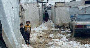 مقومات عودة اللاجئين من دول اللجوء