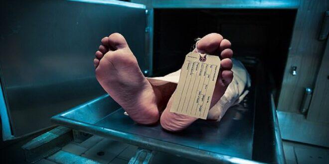 خلايا الزومبي تزداد.. ماذا يحدث بعد وفاة الانسان