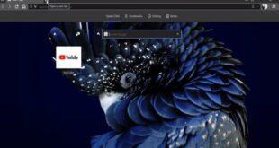 متصفح Vivaldi يسهّل التعامل مع الإنترنت بميزات جديدة