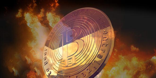 اتهام جون مكافي بالاحتيال بشأن العملة المشفرة