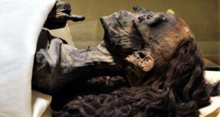 شعرها الأحمر حافظ على كثافته نحو 3 آلاف سنة