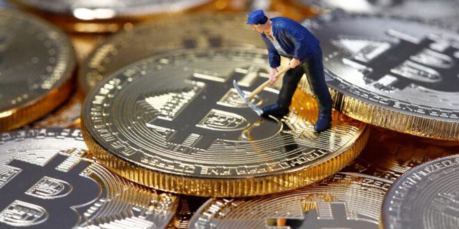 لماذا ارتفع سعر أصل العملة المشفرة