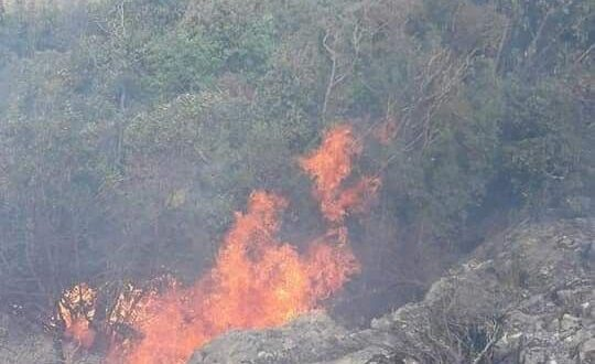 5 حرائق في 5 أيام بريف مصياف
