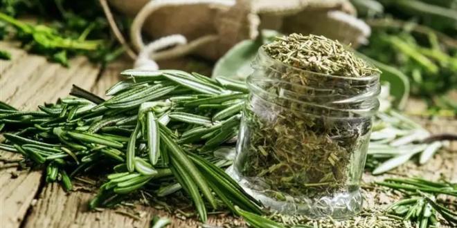 6 أعشاب سحريّة بفوائد خارقة على جسم الإنسان.. لا تفوتها