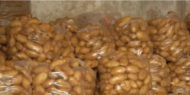 الحكومة تمدد منع تصدير البطاطا شهراً إضافياً