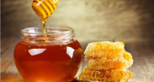ماذا يحدث لجسمك عند تناول ملعقة عسل يومياً