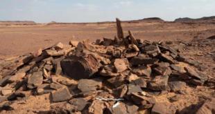 رفات كلب في السعودية تكشف عن نتائج صادمة