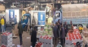 السورية للتجارة: انخفاض متوقع بأسعار الخضار