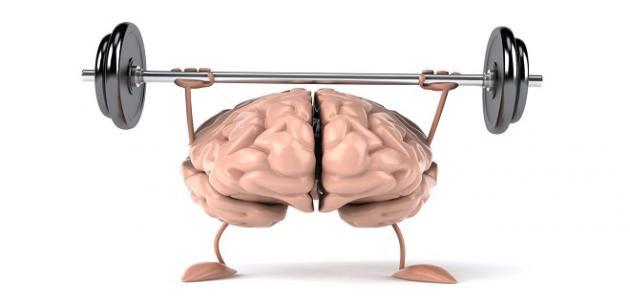 أطعمة مفيدة للدماغ تجعل العقل يعمل بكامل طاقته