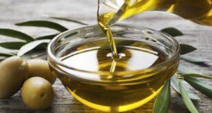 تنقيط قطرات من زيت الزيتون في الأنف.. فوائد رائعة لا تعرفونها!