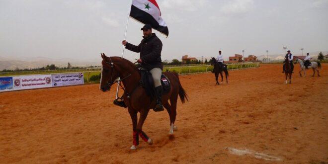 سباق الخيول العربية