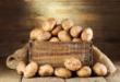 البطاطس المميتة.. احذر تناول هذا النوع منها